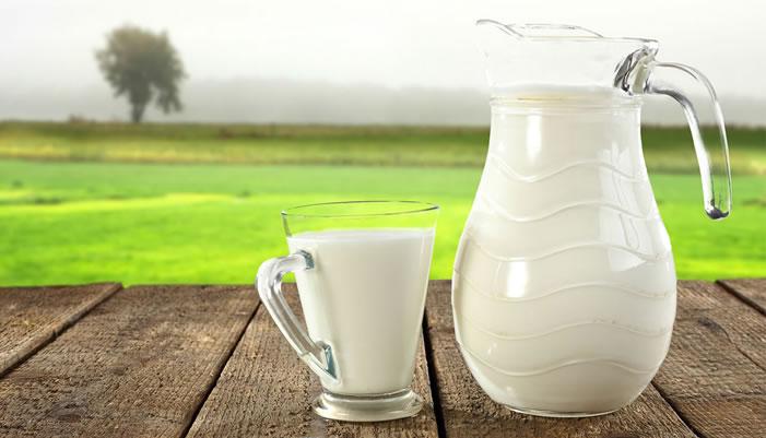 Süt ve Süt Ürünleri Üretimi, Eylül 2015