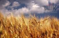 Tarım ÜFE Kasım Ayında %1,80 Arttı