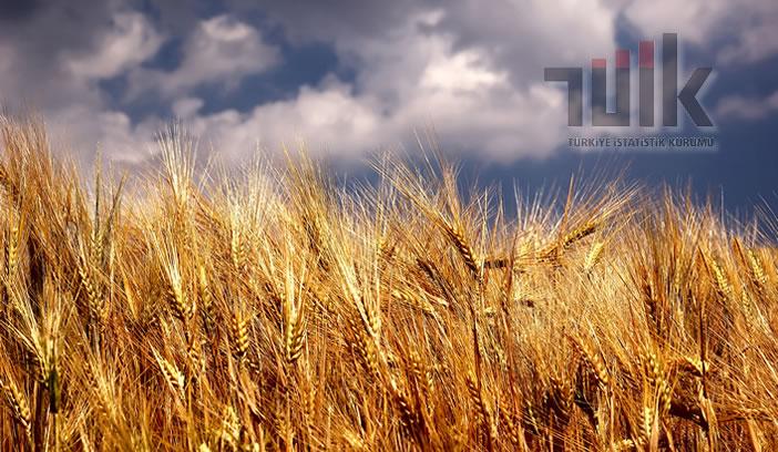Tarım- ÜFE Kasım Ayında Yüzde1,85 Azaldı