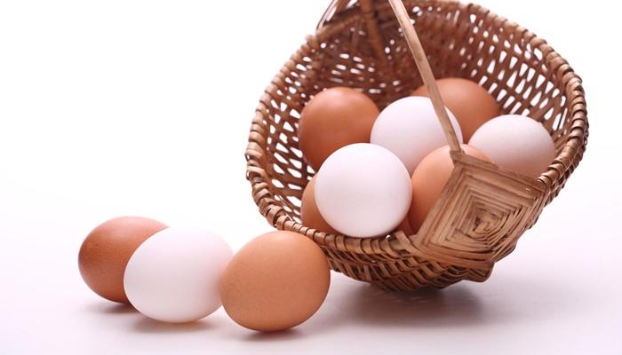 Ocak'ta 1,5 Milyar Tavuk Yumurtası Üretimi Gerçekleşti