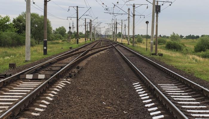 TCDD'nin Transit Rejiminde Taşıma Yapabilmesi