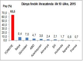 findik-ihr-1