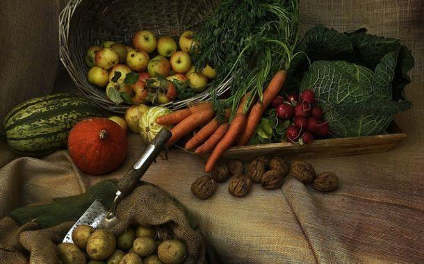 Ağustos 2019 Tarım Ürünleri Üretici Fiyat Endeksi
