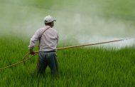 Ocak 2020 Tarımsal Girdi Fiyat Endeksi