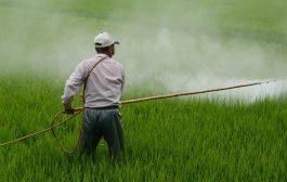 Temmuz 2021 Tarımsal Girdi Fiyat Endeksi