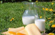 Haziran 2020 Süt ve Süt Ürünleri Üretimi