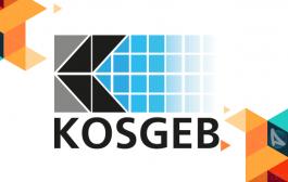 KOSGEB Destek Programları Yönetmeliğinde Değişiklik Yapılmasına Dair Yönetmelik